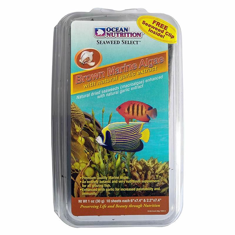 Ocean Nutrition Brown Marine Algae Seaweed 30g