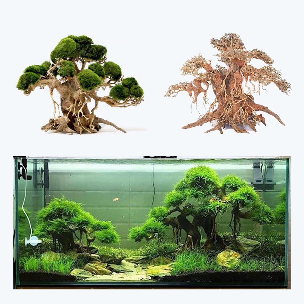 Aquarium Bonsai Tree Banyan Size L (40x40x20)