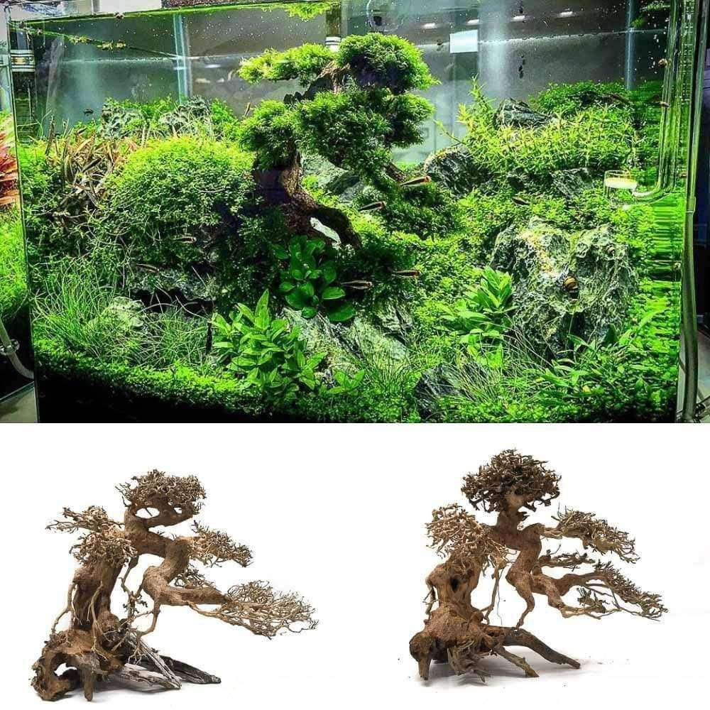 Aquarium Bonsai Tree Size MS (25x22x14)