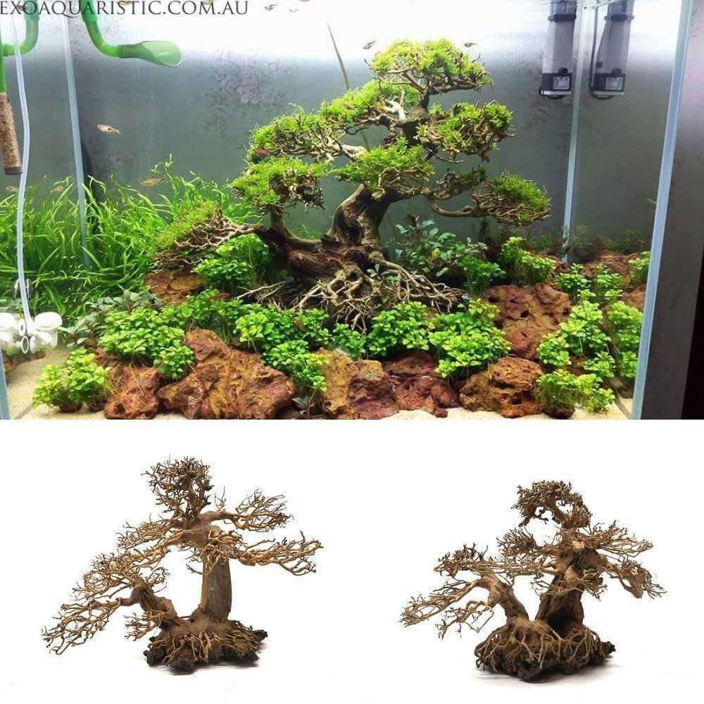 Aquarium Bonsai Tree With Rock Size M (30x23x15)