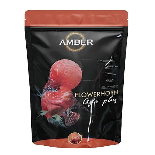 Taiyo Amber Flower Horn Asta Plus (M) 100g