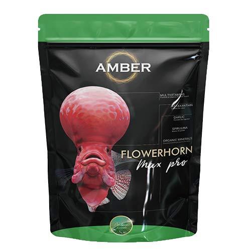Taiyo Amber Flower Horn Max Pro (M) 100g