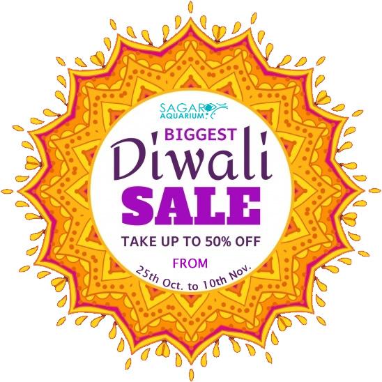 Sagar Aquarium Diwali Sale